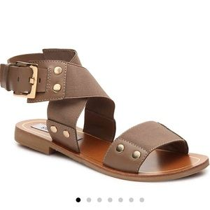 Steve Madden Cidnie Gladiator Sandals